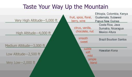 coffee flavor mountain