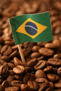 brazil is the biggest supplier of arabica coffee beans to the world