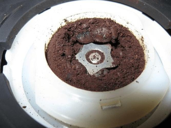 bodum bistro coffee grinder burr