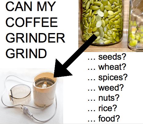 can my coffee grinder grind rice wheat nuts spices food